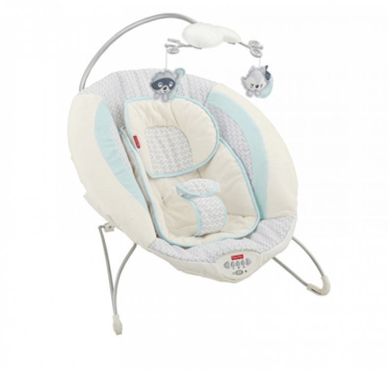 Best baby bouncers for newborns